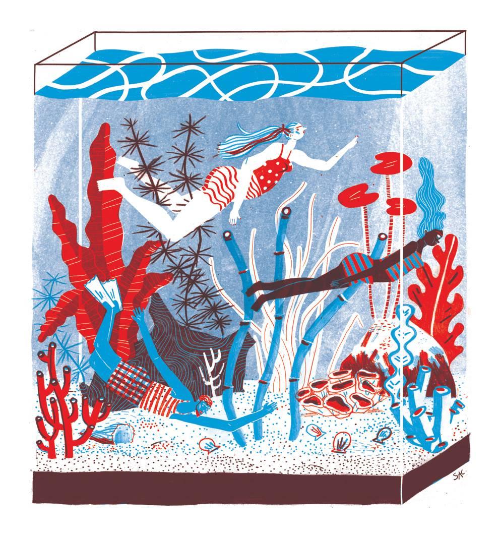maariv-aquarium