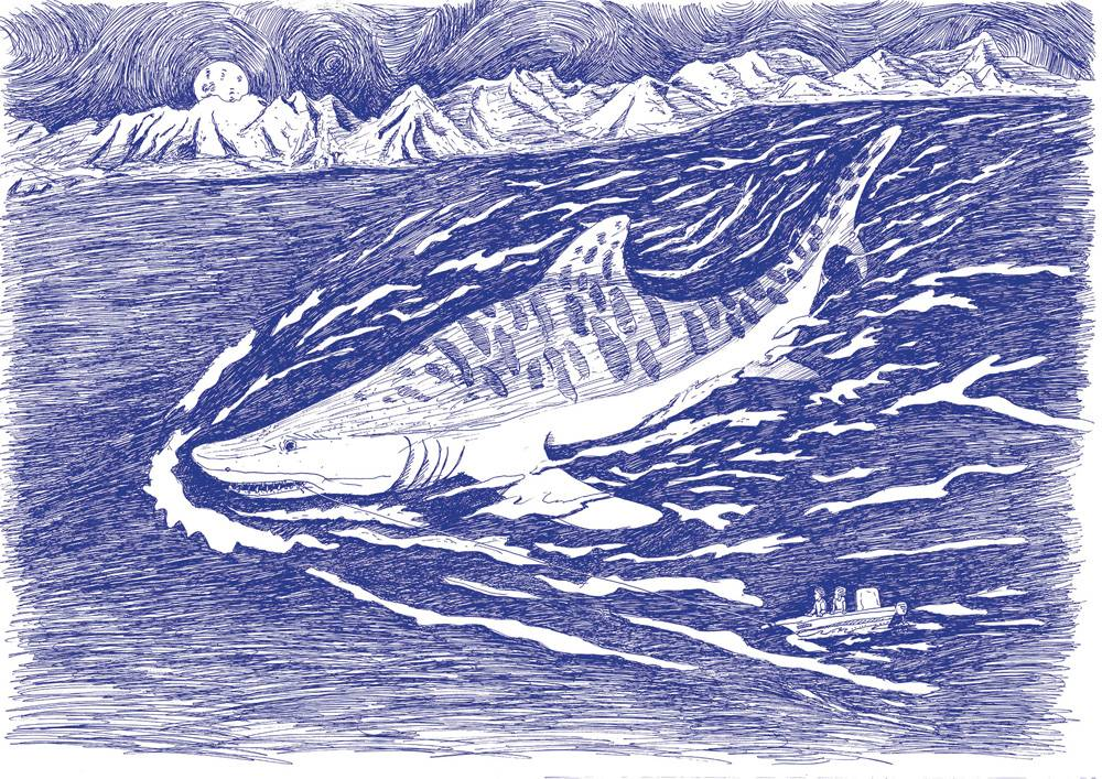 sharkBlue