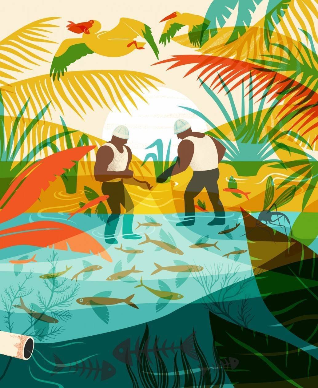אסנת פייטלסון. בריכה לבטלה: הזיהום הסביבתי שגורמים הדייגים בעמק בית שאן