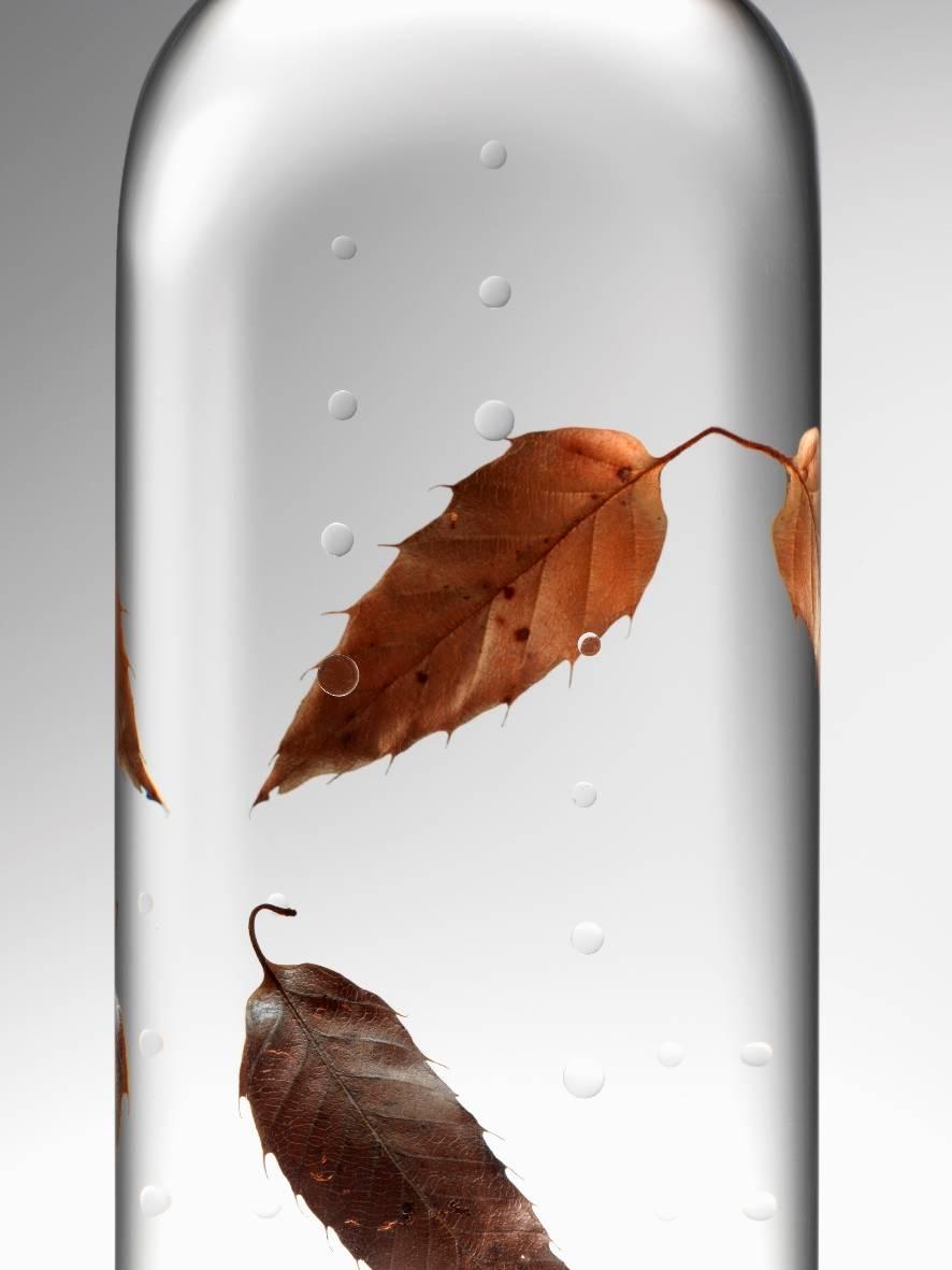 rain bottle. image: Hiroshi Iwasaki