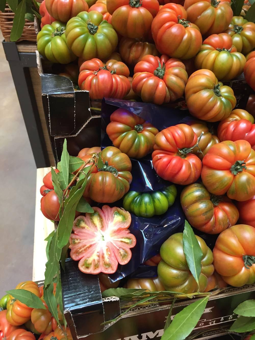 העגבניות של מילאנו