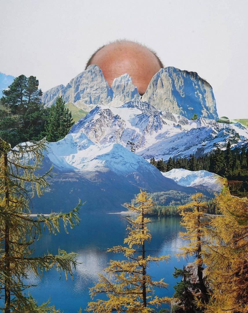 דיוי בראל, ללא כותרת, מתוך הסדרה קרחת יער