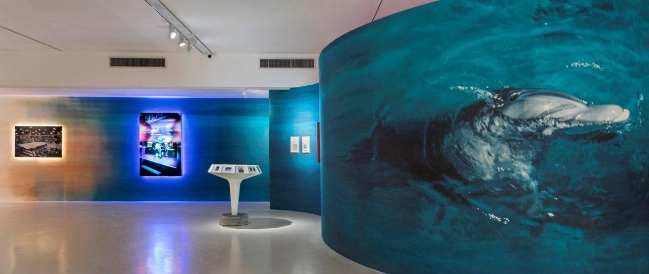 מיכאל ליאני במוזיאון הרצליה. צילומי הצבה: לנה גומון