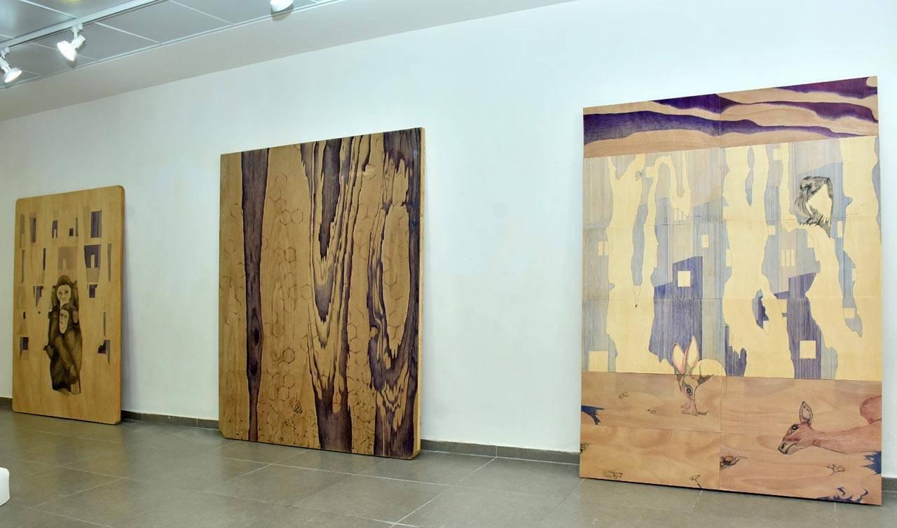 גלריה הסדנה לאמנות יבנה, מראות הצבה