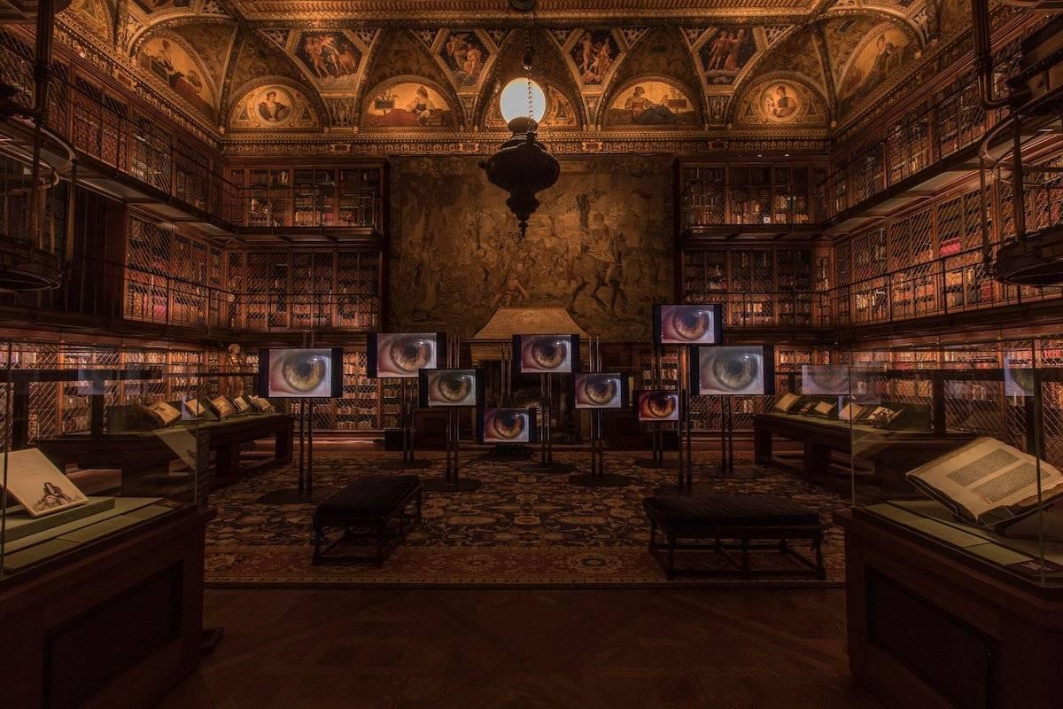 רז חמד, מחלקה לאמנויות המסך בצלאל בספריית מורגן בניו יורק. צילום: Arnold Bower