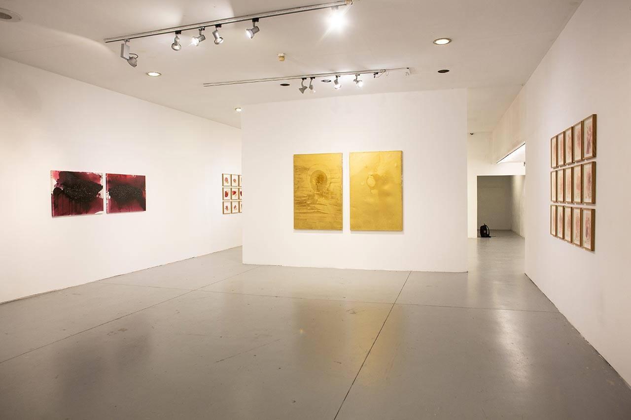 אניסה אשקר בבית האמנים תל אביב. מראה הצבה. צילומים: אלה אורגד