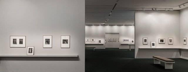 מוזיאון ישראל. צילום: אלי פוזנר